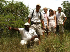 Londolozi-Walking-Safari