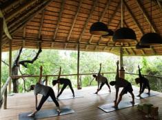 Londolozi-Yoga