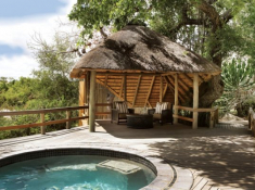 Londolozi-Founders-Camp-Superior-Chalet-Pool-and-Sala