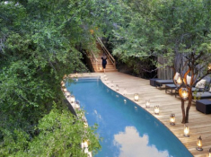 Londolozi-Pioneer-Camp-Pool-2