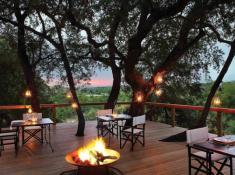 Londolozi-Tree-Dining-Area