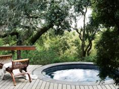 Londolozi-Varty-Camp-Plunge-Pool