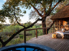 Londolozi-Varty-Camp-Superior-Chalet-Deck-3