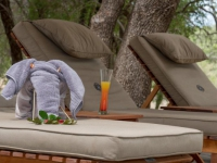 Simbavati Machaton Private Camp Loungers
