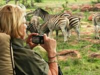 Makweti Wildlife