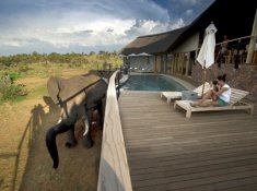 Mhondoro-Lodge-1