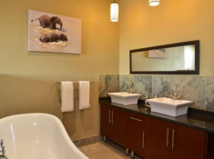 Mjejane River Lodge Bathroom