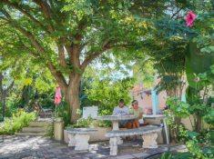 Montagu-Country-Hotel-Garden-2