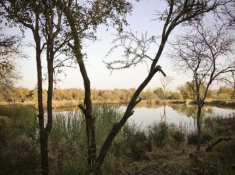 Morokolo Safari Lodge Scenery