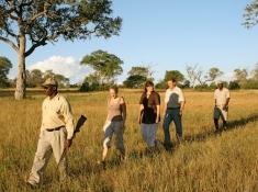 Notten's Bush Camp Walking Safari