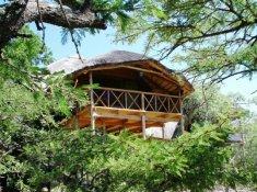 8-PEZULU-TREE-HOUSE-1
