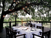 londolozi-tree-dining-area