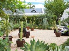 Robertson Small Hotel Cactus Garden