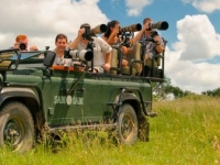 Sabi Sabi Photographic Safari