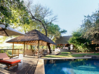 Sabi Sabi Selati Pool Area