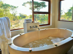 Safari Plains Bathroom 4