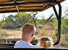 Safari Plains Game Drive 2
