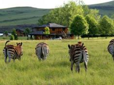 Sani-Valley-Lodge-Wildlife-2