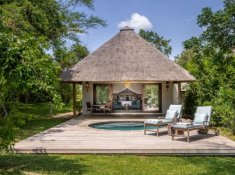 Savanna-Suite-Room-Pool
