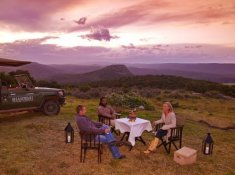 Shamwari-Game-Reserve-Sundowners