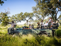 Singita Boulders Safari Drive