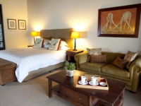 Swartberg Private Game Lodge Bedroom 1