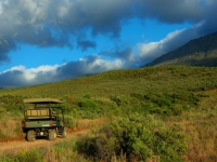 Swartberg Private Game Lodge Land Rover
