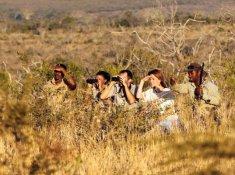Thanda-Bush-Walk-2