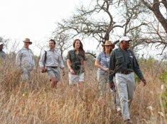 Thanda-Bush-Walk