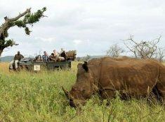 Thanda-Game-Drive-3
