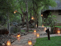 Thornybush Waterside Lodge 15