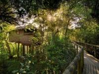 Tsala Lodge Suite Exterior and Boardwalk