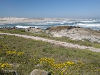tsaarsbank-picnic-site-west-coast-national-park