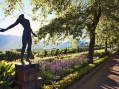 DELAIRE_GRAFF_ESTATE_Gardens_and_Anton_Smit_Faith_Sculpture