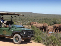 Zuurberg Mountain Village Game Drive