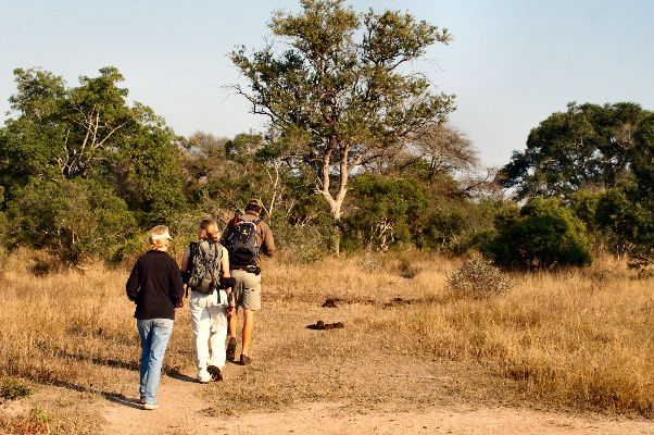 Bundubash in Style: Lukimbi Safari Lodge's Walking Trails