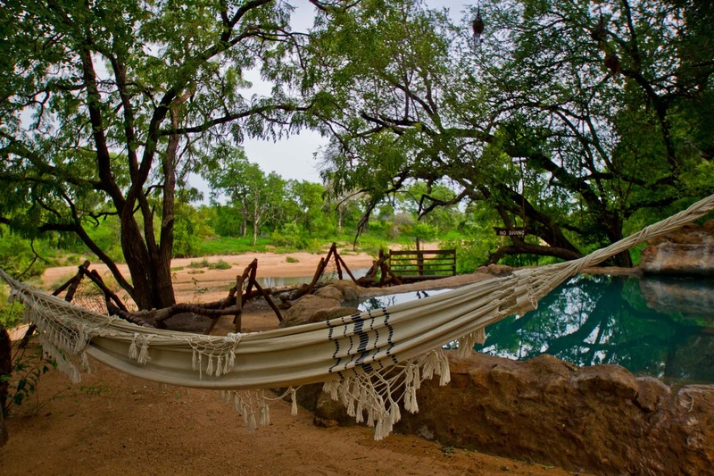 On Safari in Timbavati Game Reserve: Where to Stay