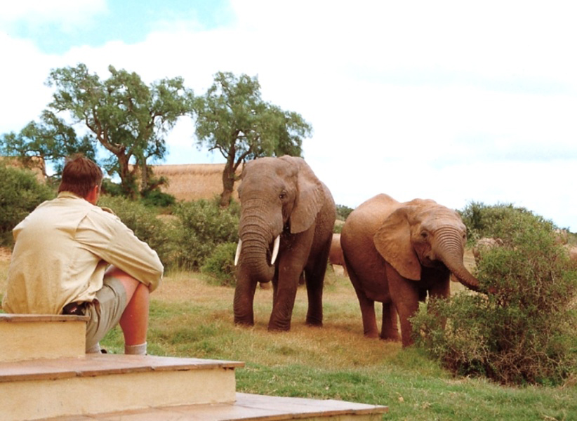 Where to Stay in Addo Elephant National Park