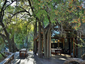 luxury private safari kruger national park south africa
