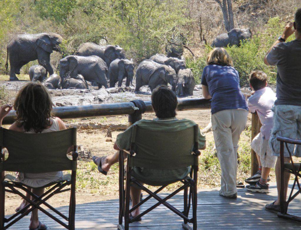 Tuningi Safari Lodge