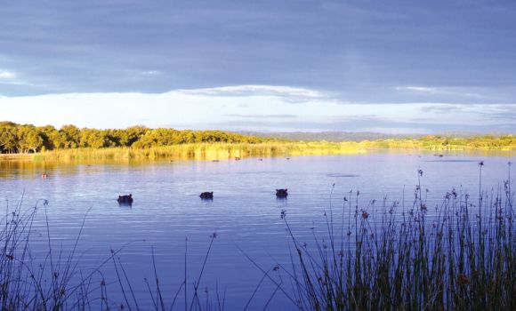 On World Wetlands Day we Celebrate the iSimangaliso Wetlands Park