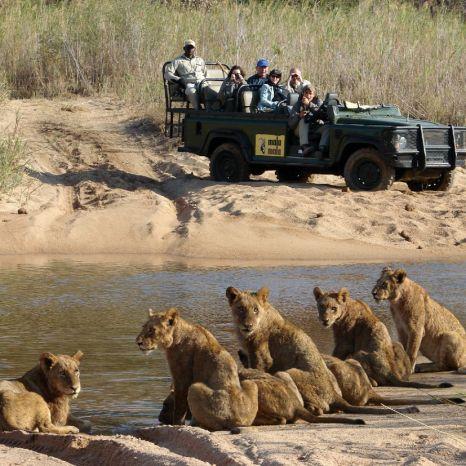 South Africa's Pioneer Safari Lodges: Let's Take a Trip Down Memory Lane …