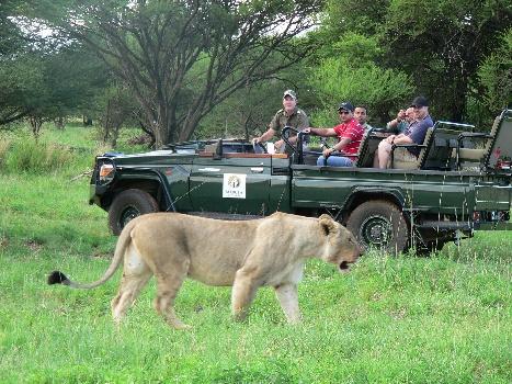 Mabula Game Lodge, Limpopo