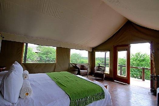 Springbok Lodge, Nambiti Game Reserve