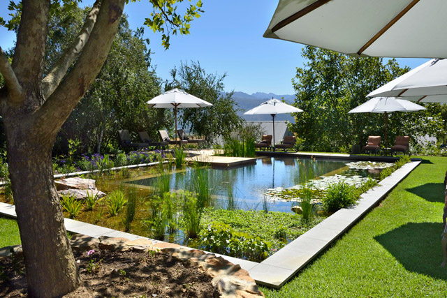 Wine Country Calls, and There's a Heavenly Hideaway at Angala Boutique Hotel near Franschhoek