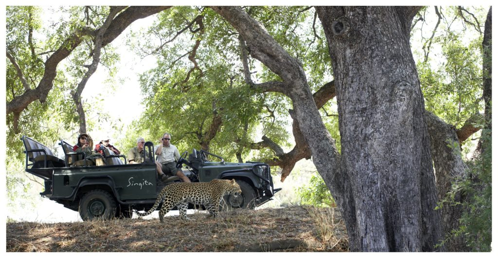 Cape to Kruger: Two Iconic Stops on any South African Tour