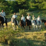 Hluhluwe horse riding