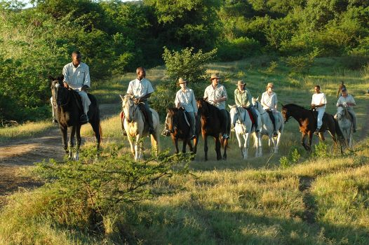 Adventure for Less at Hluhluwe River Lodge in Kzn: Now is the Time for a Low Season Saver