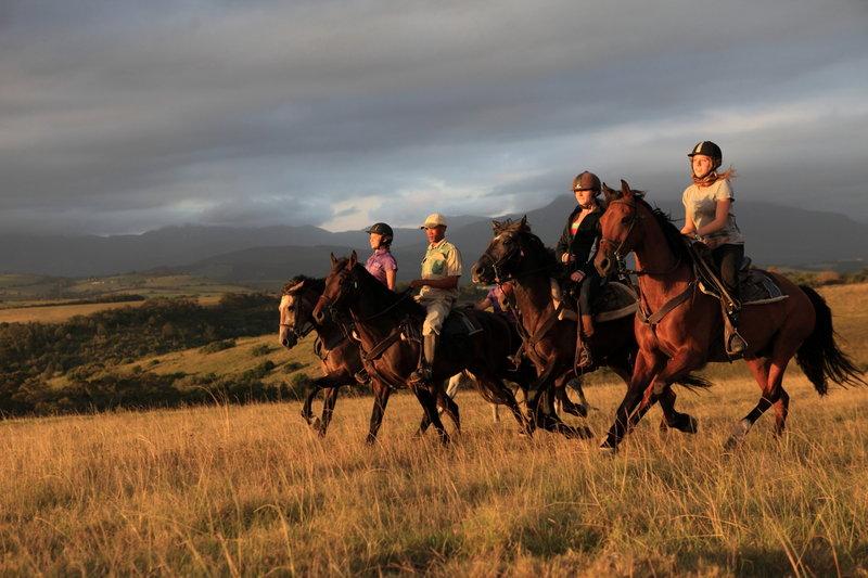 horse riding getaways and safaris South Africa