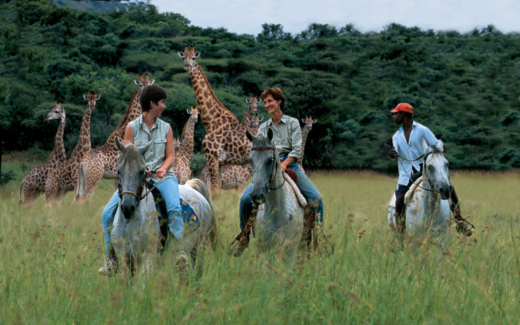 horse riding getaways and safaris South Africa